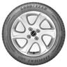 Pneu Goodyear Aro 17 EfficientGrip Performance 205/55R17 91V